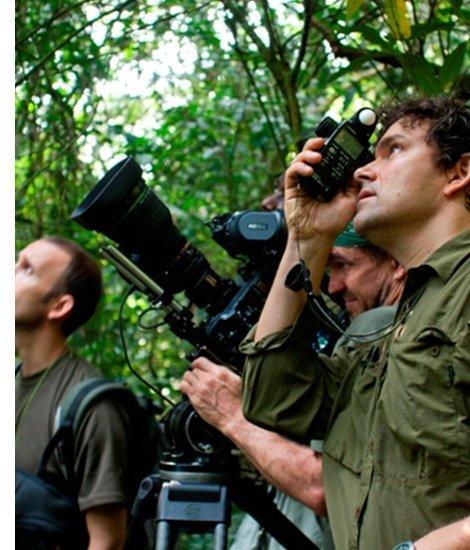 Uganda Wildlife Authority UWA Filming Contracts