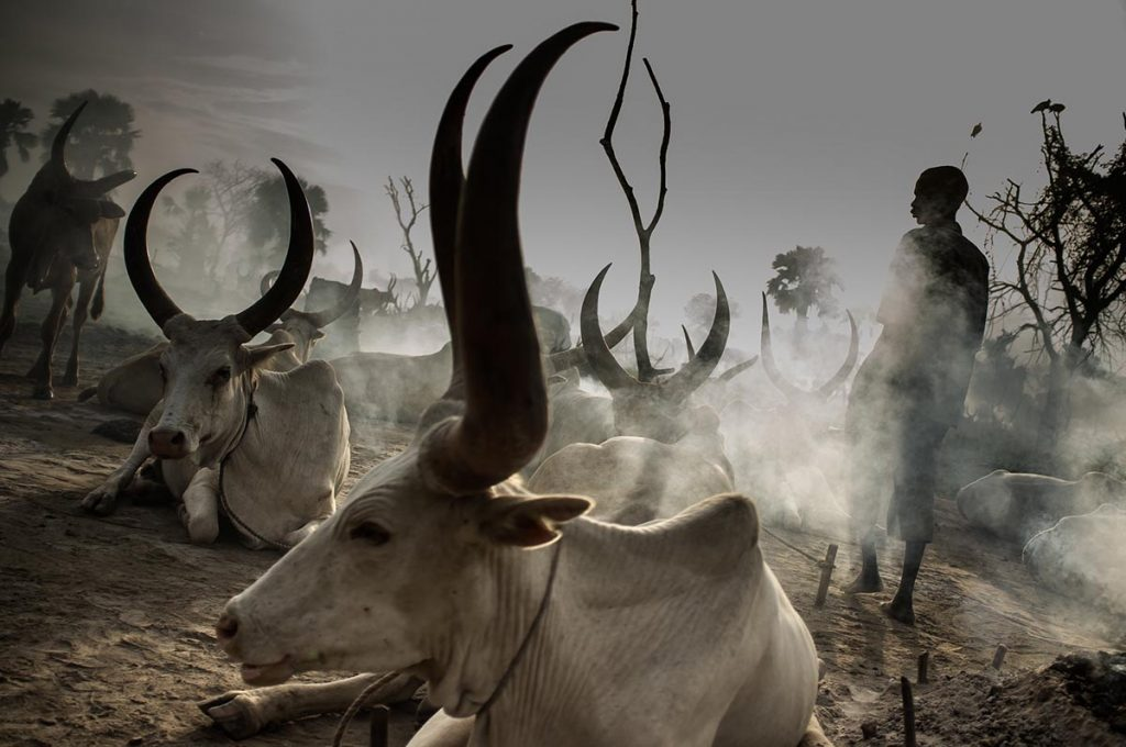 Dinka Cattle Camps, their Culture and Traditions